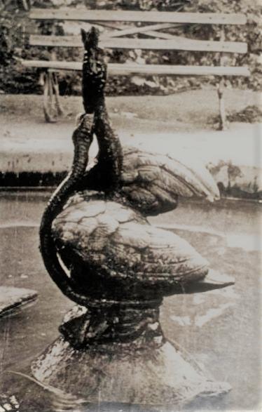 La simbología oculta de la Pava de la balsa: Un enclave mágico
