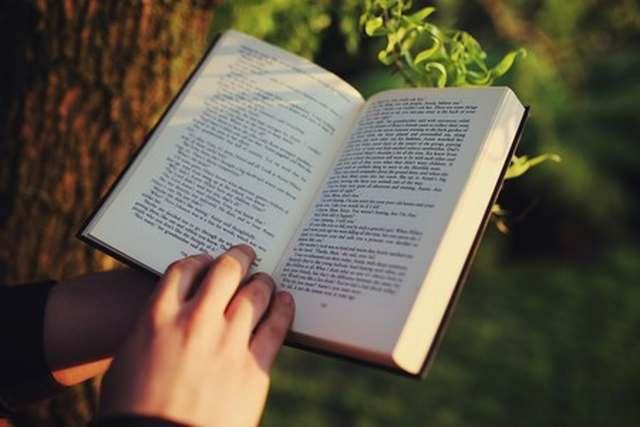En el día del libro: Hacia la construcción de una motivación literaria desde la escuela
