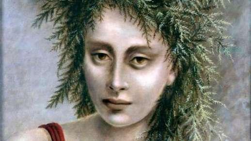 Dorothea 1