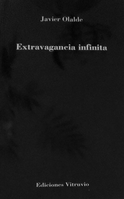 'Extravagancia infinita' de Javier Olalde