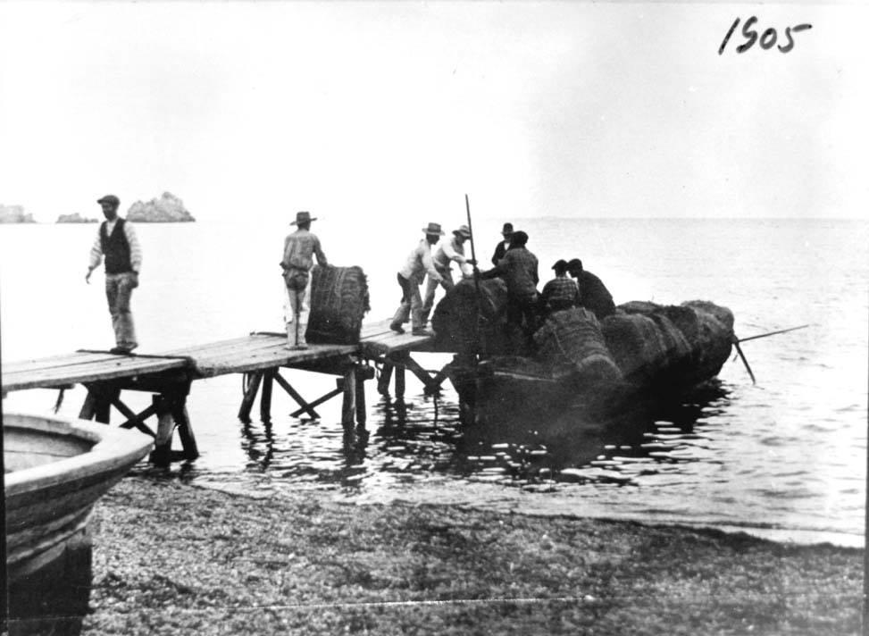 Embarque de balas de esparto en una gabarra